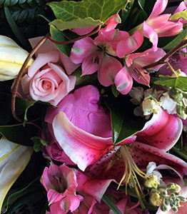 Fresh Seasonal flower supplier in Orewa