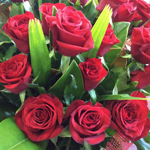 Fresh Seasonal flowers supplier in Auckland