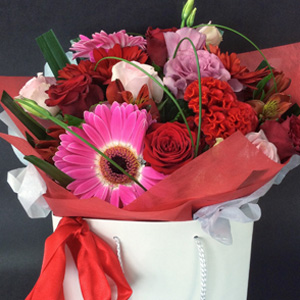 Fresh Seasonal flowers suppliers in Stanmore Bay