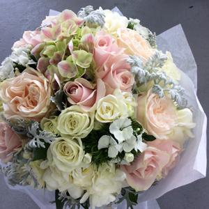 Seasonal flowers suppliers in Silverdale