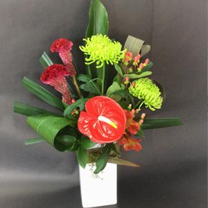 Seasonal flowers suppliers in Red Beach